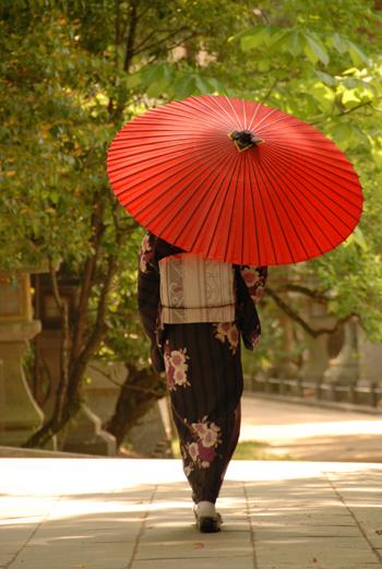 blog-phot270b.jpg